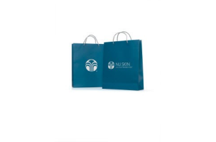 NSE Large Paper Bags